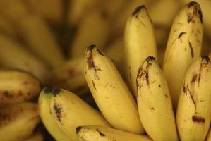 Como cozinhar bananas maduras em um Pan