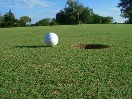 Onde obter uma licenciatura em gestão de golfe