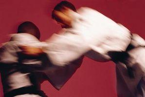 """O Significado de """"Jiu Jitsu"""""""