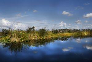 Hospedagem em Everglades National Park