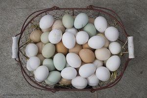 Quanto tempo pode ovos cozidos Seja fora da geladeira?