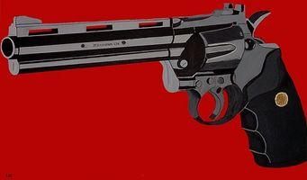 Como identificar um Magnum 500