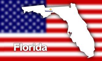 Os Melhores Hotéis para se hospedar em Tampa Bay Florida