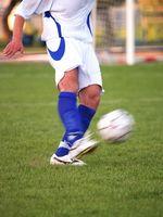 Extracurriculares Atividades Esportivas
