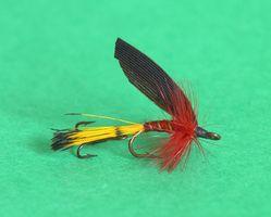 Guia Minnesota Fly Fishing