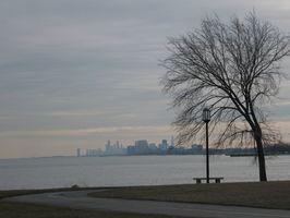Restaurantes em Lakeview, Chicago Illinois