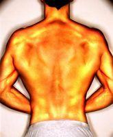 O exercício corporal Compensações Push Ups?