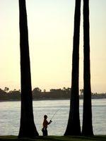Outubro Bass Fishing dicas