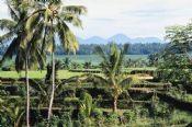 Como encontrar hotéis baratos em Bali