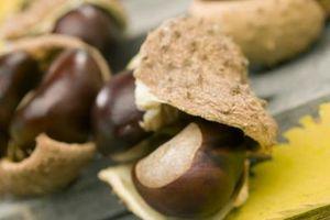 Como cozinhar a manteiga de amendoim Balls (Buckeyes)