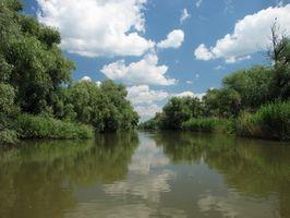 Delta do Nilo Informação