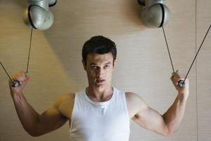 A importância da proteína no corpo durante o treinamento de resistência