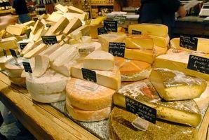 Que tipo de microrganismo é usado para fazer queijo?