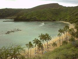 Como a viagem das ilhas havaianas