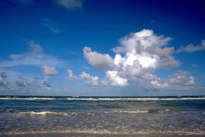 Acampamento de verão em Jacksonville Beach, Florida