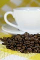 Como usar um Mr. Coffee Grinder IDS50
