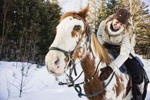 Andar a cavalo Acampamento de verão para meninas