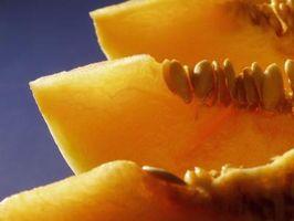 Posso Amadureça uma Cantaloupe Uma vez que ele foi cortado?