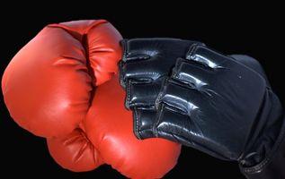 Luvas de combate UFC oficiais Requisitos