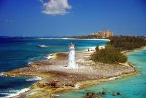 Qual é a diferença entre o Atlantis Cove & Reef?