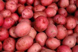 Sobre Batatas vermelhas