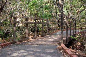 Pneus Crossroads para Trails Rail