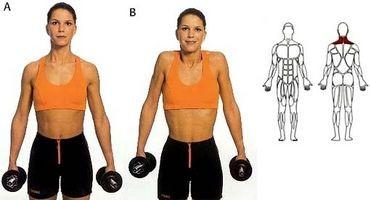 Como fazer exercícios pescoço com Dumbells 1