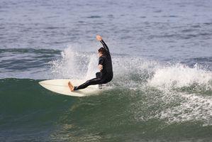 Surf Training Instructor