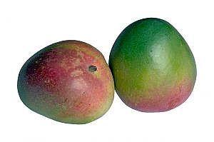 Como fazer um Mojito Mango