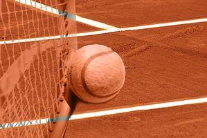 Squash Racket Informação