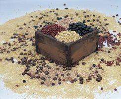 Como cozinhar o feijão secadas no Crock Pot