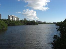 Flórida Timeshare Resorts para solteiros
