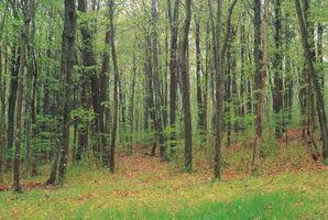 Lugares para visitar em Bucks County, PA