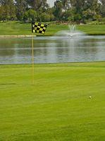 Segredos de Swing Golf