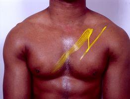 Como construir muscular com suplementos para musculação