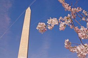 Alexandria, Virginia, e Washington, DC, Hotéis