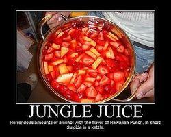 Como fazer a melhor receita Jungle Juice