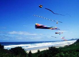 """SpongeBob SquarePants """"Go Fly a Kite"""" Instruções de Montagem"""