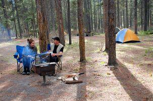 Campgrounds Perto Midland, Michigan