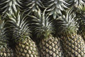 Como saber quando abacaxi é Bad