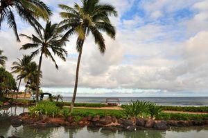 1 Estrela hotéis perto de Hawaii Food Tours