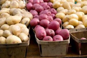 Quais são os melhores batatas para salada de batata?