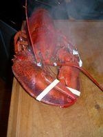 Frutos do mar Restaurantes perto de Deer Isle, Maine