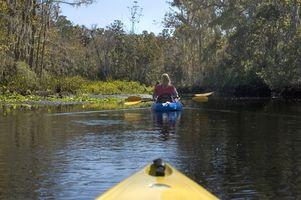 Acampamento de verão a preços acessíveis em Florida