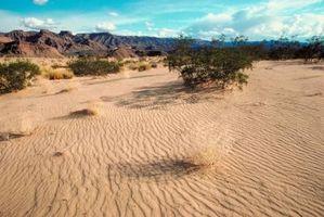 Corpos de água na Região do deserto da Califórnia para Crianças