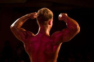 Como treinar para força e resistência muscular