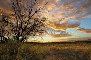 Férias em New Mexico