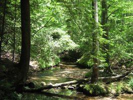 RV Camping nos Parques Estaduais de Alabama