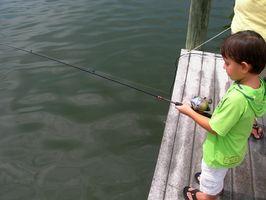 Como colocar linha de pesca em um Spincast Reel