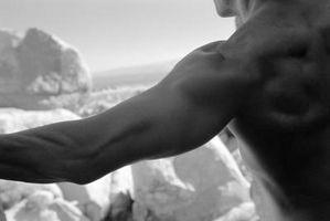 Quais exercícios de peso corporal Trabalhe o deltóide posterior?